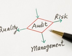 Information Systems Audit Services